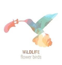 Wildlife banner - bird colibri vector