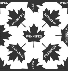 canadian maple leaf with city name winnipeg icon vector image