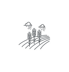 Farm wheat line icon outline of vector