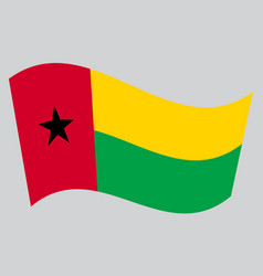 flag of guinea-bissau waving on gray background vector image vector image