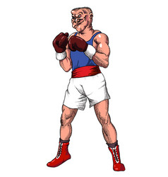 cartoon image of boxer vector image