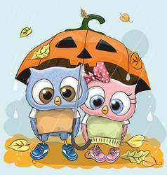 Halloween card two cute cartoon owls vector