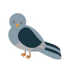 pigeon bird icon vector image vector image