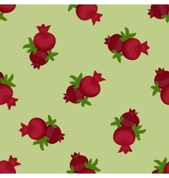 Pomegranate seamless pattern fruits and leaves vector image vector image