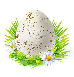 White egg with spots on grass vector
