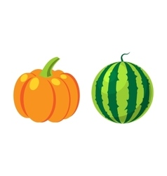 Fresh orange pumpkin and watermelon isolated vector image