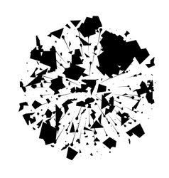 Abstract black explosion on white background vector