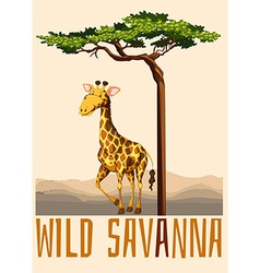 Wild savanna theme with giraffe vector