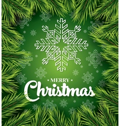 Christmas card with white snowflakes on green vector image vector image