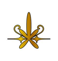 Decoration ornament golden floral vector
