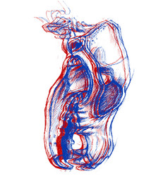 dog skull 3d vector image vector image