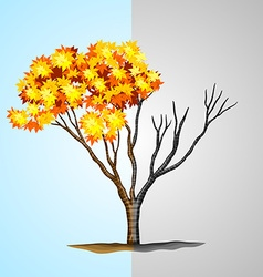 Tree half with leaves and half without vector