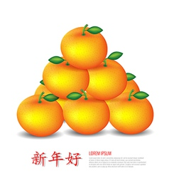Chinese new year mandarin oranges vector