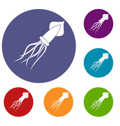 Squid icons set vector