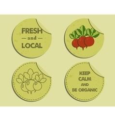 Summer farm fresh branding identity elements vector