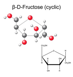 Structural chemical formula and model of fructose vector