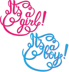 Its a girl boy lettering Baby shower vector image