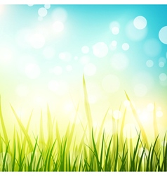 Natural Spring or Summer Sunny Background vector image
