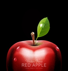 red apple close-up with drops on a black backgroun vector image