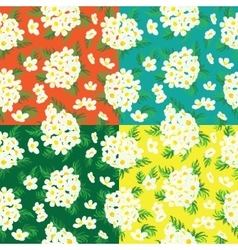 Seamless floral pattern of camomile vector
