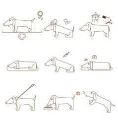 thin line caring for dog set vector image vector image