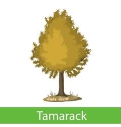 Tamarack cartoon tree vector image vector image