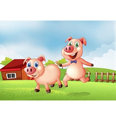 Two pigs at the farm vector image vector image