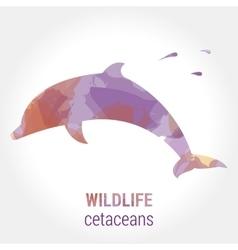 Wildlife banner - cetaceans dolphin vector image