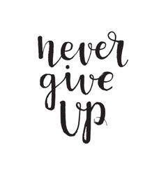 Calligraphic inscription never give up vector