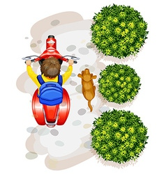 A topview of a boy riding a motorcyle vector image vector image