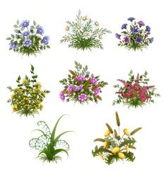 floral bush set on transparent background vector image vector image