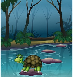 A turtle at the lake vector image