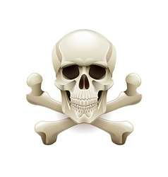 Skull crossbones isolated on white vector image vector image