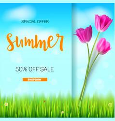 summer sale banner stylish advertisement text vector image