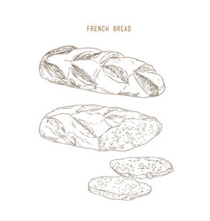 French bread pastry hand drawn sketch vector