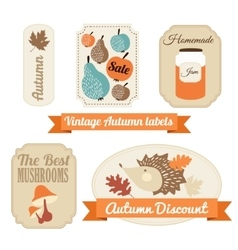 Set of vintage autumn fall labels tags stickers vector