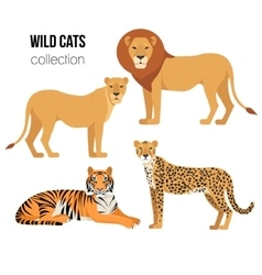 Predatory animals lion lioness cheetah tiger vector