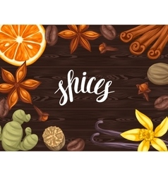 Background design with various spices vector image