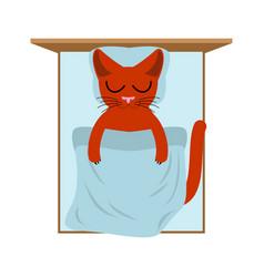 cat sleeps in bed pillow and blanket sleeping vector image vector image