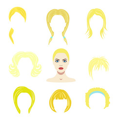hair styles collection vector image vector image