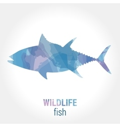 Wildlife banner - fish tuna vector image