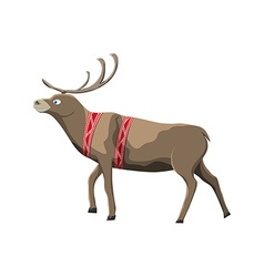 Santa claus deer isolated on white background vector