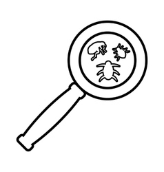 Magnifier and insects icon outline style vector