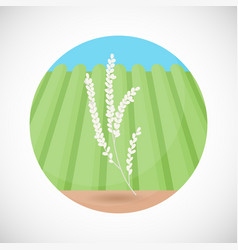 Rice plant bag flat icon vector