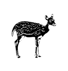 spotted deer silhouette in black and white vector image vector image