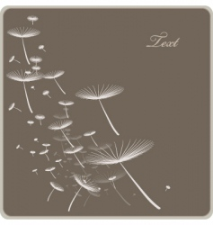 dandelion spores vector image vector image