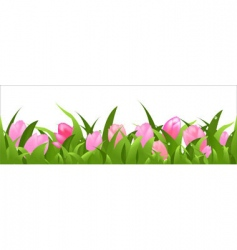 tulips panorama vector image vector image