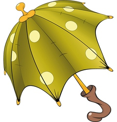 Green umbrella vector image