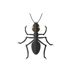Ant icon vector