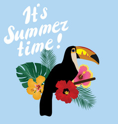 it is summer time vector image vector image
